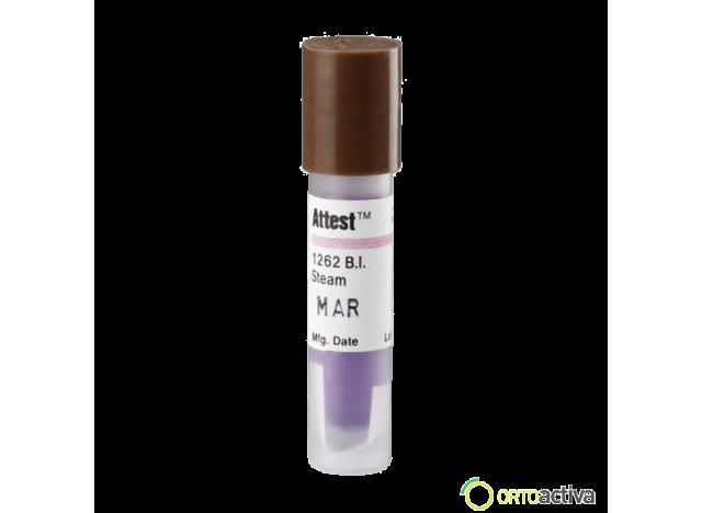 INDICADOR BIOLOGICO VAPOR (100 unid.) REF. 24801EZ00